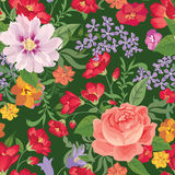 floral πρότυπο άνευ ραφής φως λουλουδιών ανασκόπησης playnig Floral άνευ ραφής κείμενο Στοκ Φωτογραφία