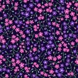 floral πρότυπο άνευ ραφής Στοκ εικόνες με δικαίωμα ελεύθερης χρήσης