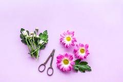 floral πρότυπο καρδιών λουλουδιών απελευθέρωσης πεταλούδων κίτρινο Κάνετε την έννοια ανθοδεσμών Ρόδινα λουλούδια κοντά στα scicco Στοκ Φωτογραφία