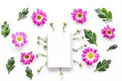 Floral πρότυπο Φύλλο του εγγράφου στο πλαίσιο των ρόδινων λουλουδιών στην άσπρη τοπ άποψη υποβάθρου Στοκ Φωτογραφία