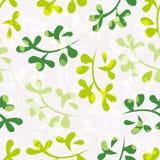 floral πρότυπο φύλλων άνευ ραφής Στοκ φωτογραφία με δικαίωμα ελεύθερης χρήσης
