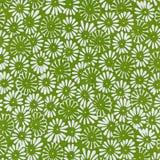 floral πρότυπο Στοκ φωτογραφία με δικαίωμα ελεύθερης χρήσης