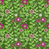 Floral πρότυπο Στοκ Εικόνα