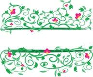 Floral πλαίσιο αμπέλων Στοκ Φωτογραφία