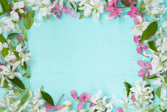 Floral πλαίσιο με τα λουλούδια της Apple Στοκ εικόνα με δικαίωμα ελεύθερης χρήσης