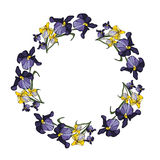 Floral πλαίσιο συνόρων και κύκλων Στοκ εικόνες με δικαίωμα ελεύθερης χρήσης