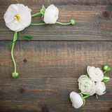 Floral πλαίσιο των άσπρων λουλουδιών στο ξύλινο υπόβαθρο Επίπεδος βάλτε, τοπ άποψη floral πρότυπο καρδιών λουλουδιών απελευθέρωση Στοκ Εικόνες