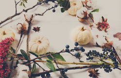 Floral πλαίσιο των ξηρών λουλουδιών στην άσπρη ξύλινη, τοπ άποψη Στοκ Εικόνες