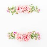 Floral πλαίσιο των όμορφων ρόδινων τριαντάφυλλων και των οφθαλμών στο άσπρο υπόβαθρο Επίπεδος βάλτε, τοπ άποψη floral πρότυπο καρ Στοκ Εικόνα