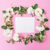 Floral πλαίσιο φιαγμένο από άσπρα λουλούδια και φύλλα στο ρόδινο υπόβαθρο λεπτομερές ανασκόπηση floral διάνυσμα σχεδίων Επίπεδος  Στοκ φωτογραφία με δικαίωμα ελεύθερης χρήσης