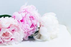 floral ροζ ανασκόπησης Στοκ φωτογραφία με δικαίωμα ελεύθερης χρήσης