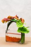 Floral ρύθμιση με τους κρίνους, Anthurium και την πρασινάδα της Calla επάνω Στοκ Εικόνες
