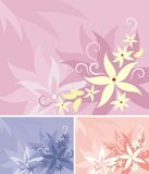 floral σειρά ανασκόπησης Στοκ φωτογραφίες με δικαίωμα ελεύθερης χρήσης