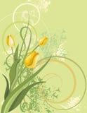 floral σειρά ανασκόπησης Στοκ Εικόνες