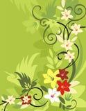 floral σειρά πουλιών ανασκόπησ&et Στοκ Φωτογραφία
