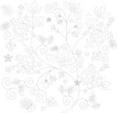 floral σκίτσο διακοσμήσεων διανυσματική απεικόνιση