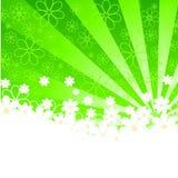 floral σκιαγραφία μαργαριτών α&nu ελεύθερη απεικόνιση δικαιώματος