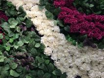 Floral στεφάνι Στοκ Φωτογραφία