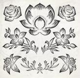 Floral στοιχεία σχεδίου. διανυσματική απεικόνιση Στοκ φωτογραφίες με δικαίωμα ελεύθερης χρήσης