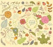 Floral στοιχεία σχεδίου στο ύφος doodle Στοκ φωτογραφία με δικαίωμα ελεύθερης χρήσης