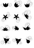 Floral στοιχεία Στοκ εικόνα με δικαίωμα ελεύθερης χρήσης