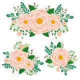 Floral στοιχεία Peony καθορισμένα - συρμένο χέρι διάνυσμα Στοκ φωτογραφία με δικαίωμα ελεύθερης χρήσης