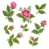 Floral στοιχείο decorativ Στοκ φωτογραφία με δικαίωμα ελεύθερης χρήσης