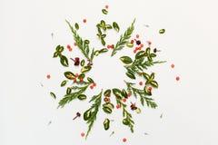 Floral στρογγυλό πλαίσιο με τα κόκκινα μούρα και τα κιτρινοπράσινα φύλλα Στοκ Εικόνες