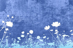 floral συστάσεις Στοκ Εικόνες