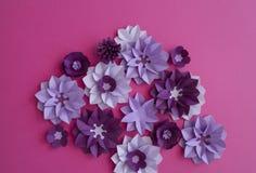 Floral σχέδια φύσης εγκαταστάσεων λουλουδιών Στοκ Εικόνα