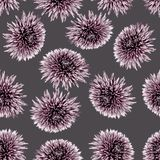 Floral σχέδιο άνευ ραφής στοκ εικόνες