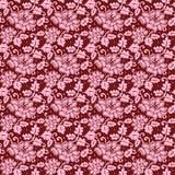 Floral σχέδιο δαντελλών Στοκ Εικόνες