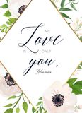 Floral σχέδιο καρτών: άσπρο ρόδινο λουλούδι Anemone, πράσινα φύλλα, euc απεικόνιση αποθεμάτων