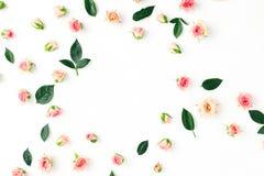 Floral σχέδιο, ρόδινα τριαντάφυλλα, πράσινα φύλλα, άσπρο υπόβαθρο, επίπεδο Στοκ Εικόνες