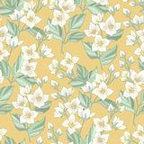 Floral σχέδιο της Jasmine διανυσματική απεικόνιση