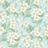 Floral σχέδιο της Jasmine ελεύθερη απεικόνιση δικαιώματος