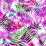 Floral σχέδιο φύλλων σε ένα ρόδινο υπόβαθρο Τα φύλλα Watercolour δίνουν το συρμένο σχέδιο στοκ φωτογραφία