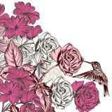Floral σχέδιο με τα τριαντάφυλλα και κολίβριο στο χαραγμένο ύφος Στοκ Εικόνες