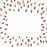 Floral σχέδιο φιαγμένο από ρόδινα και μπεζ τριαντάφυλλα στο άσπρο υπόβαθρο Επίπεδος βάλτε, τοπ άποψη Σύσταση σχεδίων λουλουδιών Στοκ Εικόνες