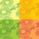 Floral σχέδιο Στοκ Εικόνα