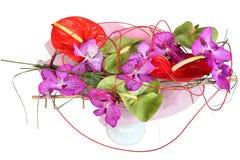 Floral σύνθεση με τις ορχιδέες και anthurium, ανθοδέσμη του λουλουδιού Στοκ Εικόνα