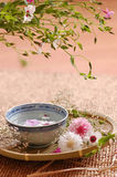 Floral σύνθεση SPA στοκ φωτογραφία με δικαίωμα ελεύθερης χρήσης