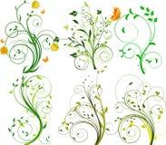 floral σύνολο ανασκοπήσεων Στοκ Εικόνες