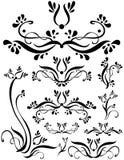 floral σύνολο κυλίνδρων Στοκ Εικόνες