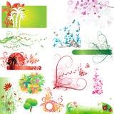 floral σύνολο στοιχείων Στοκ Εικόνες