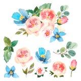 Floral σύνολο Watercolor Ζωηρόχρωμη floral συλλογή με τα φύλλα και τα λουλούδια, που σύρουν το watercolor floral σύνολο στοιχείων Στοκ φωτογραφίες με δικαίωμα ελεύθερης χρήσης