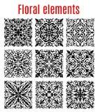 Floral σύνορα και περίκομψα διανυσματικά στοιχεία Στοκ Εικόνες