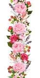 Floral σύνορα με τα λουλούδια, τριαντάφυλλα, φτερά Επαναλαμβανόμενη τρύγος λουρίδα watercolor Στοκ Εικόνες