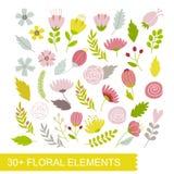 floral σύνολο στοιχείων Ελεύθερη απεικόνιση δικαιώματος