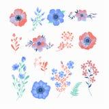 Floral σύνολο όμορφων λουλουδιών και φύλλων Στοκ Εικόνες